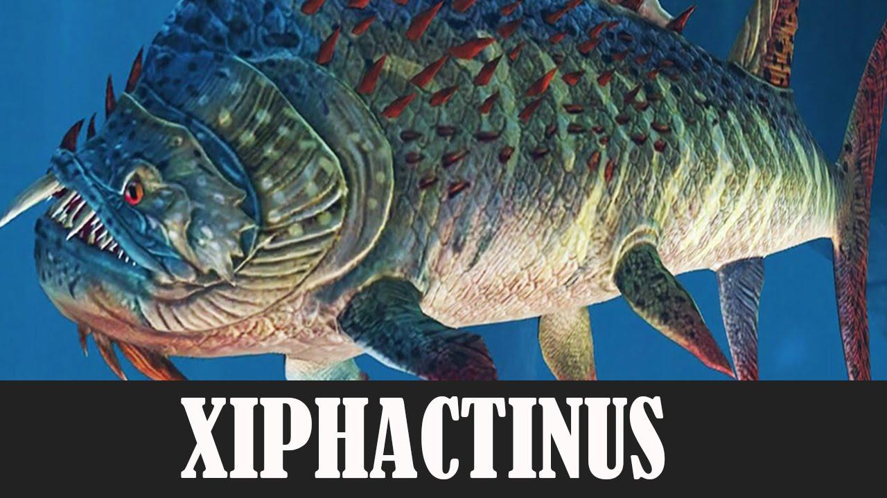 Xiphactinus.html | Autos Post