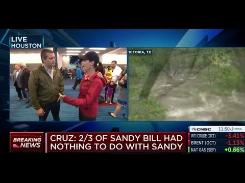 Ted Cruz Destroys NY RINO Peter King Over Hurricane Harvey Criticism