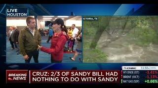Ted Cruz Destroys NY RINO Peter King Over Hurricane Harvey Criticism