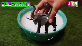 Learn Zoo Wild Animals names for kids, children, toddlers | learning wild animals | JST