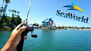 Fishing at SEA WORLD!! Got Broken off by Something BIG...