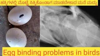 Sollution for egg binding in birds  ಕಾಲು ಎಳ್ಕೊಂಡಿರುವ ಹೆಣ್ಣು ಹಕ್ಕಿಗಳಿಗೆ ಮನೆ ಮದ್ದು