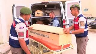 Karadeniz'de Facia: Ölenlerin Cenazeleri Kıyıya Getirildi