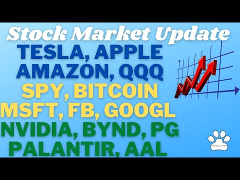 Update On Tesla, Apple, Nasdaq, S\u0026P 500, Amazon, Bitcoin, Palantir, Microsoft, Facebook, And Google