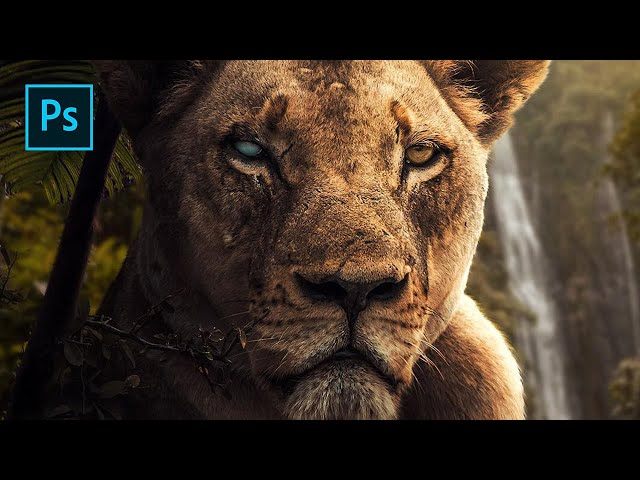 Wild Lioness - Photoshop Manipulation Tutorial