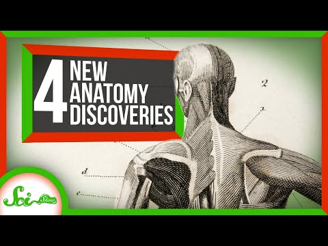 4-body-parts-discovered-in-the-last-10-years