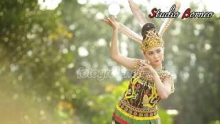 Download lagu lagu dayak binua pamarek jubata tanah borneo 2017 MP3