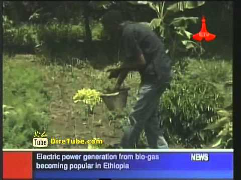 Electric power generation from bio-gas becoming popular in Ethiopia