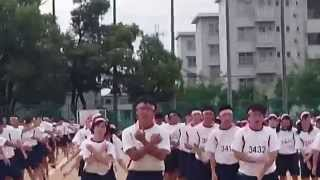 県立伊丹高校 体育大会 2015 全体体操