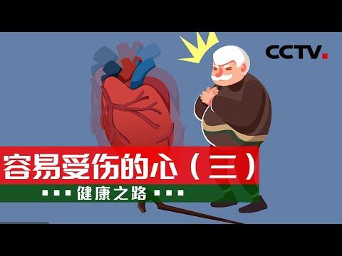 中國-健康之路-20211027 容易受傷的心(三)