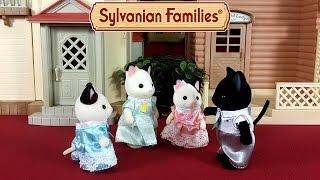 Семья черно-белых котов Сильваниан Фэмилис обзор новинки + мультик из игрушек
