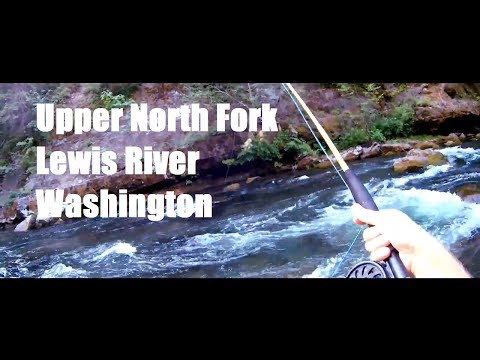 Fishing Travels: Washington North Fork Lewis River Fly Fishing