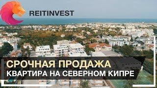 🇹🇷🏊👉 Северный Кипр, недвижимость | Купить Квартиру в Кирении - Срочная продажа!