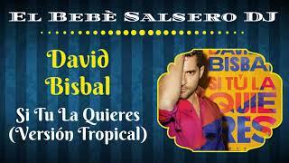 🆕 David Bisbal - Si Tu La Quieres (Versión Tropical) (Salsa 2020) 🔻El Bebè Salsero DJ🔺