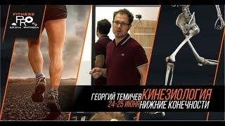 Анонс - Кинезиология в работе персонального тренера. 23-24 июня. г. Алматы