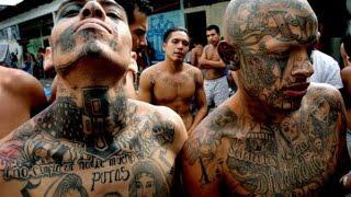 Europas Krieg gegen die Drogen Mafia [Doku Drogen 2015] [HD]