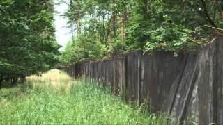 Gambar cover Der, Der Verbotene Wald