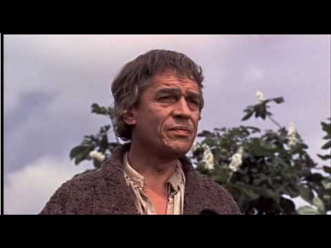 A Man For All Seasons  Paul Scofield