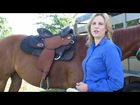 Proper Use of Off Billet and Half Breed with Circle Y Saddles   Reinsman Equestrian
