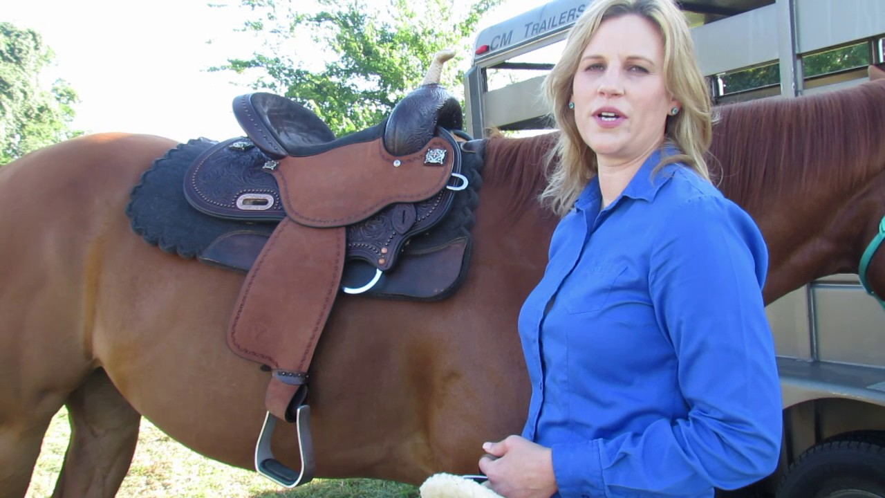 Proper Use of Off Billet and Half Breed with Circle Y Saddles | Reinsman  Equestrian