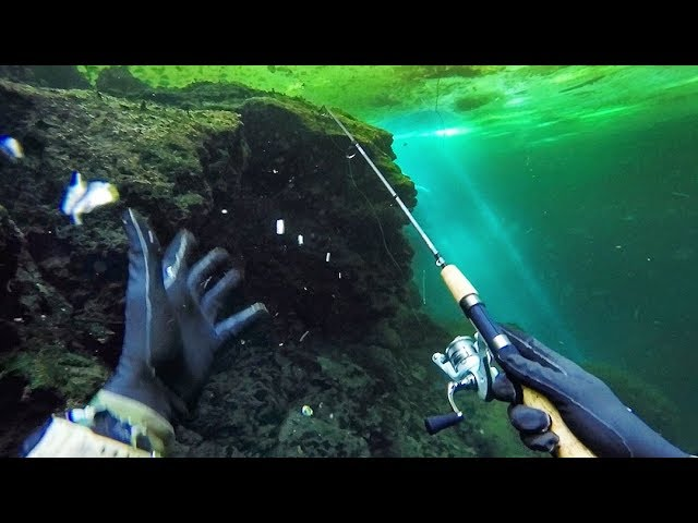 scuba-diving-and-fishing-underwater-in-a-crystal-clear-pond-caught-a-fish-26ft-deep