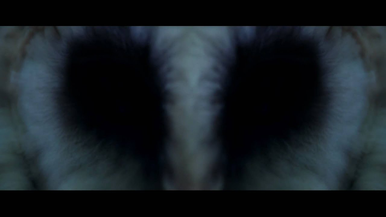 Films Vf Phenomenes Paranormaux - Bande-annonce - Vf - Youtube