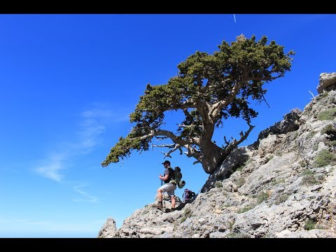 Crete - The White Mountains