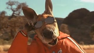 The entire Kangaroo Jack movie but it is just kangaroos