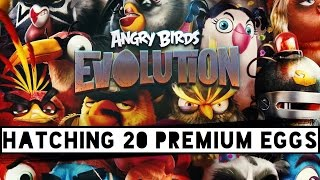 Angry Birds Evolution   Hatching 20 Premium Eggs