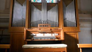 Nicola Salvati - Lobt Gott, ihr Christen, allzugleich BWV 609 - Johann Sebastian Bach (1685-1750)