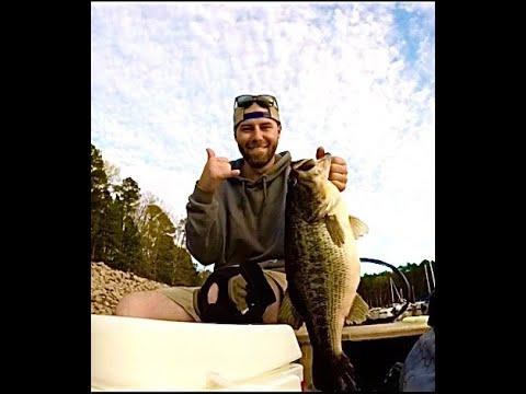 HUGE BASS! Jordan Lake NC Bass Fishing