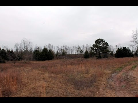 Property land home site for sale 140 acres Birch Tree Missouri