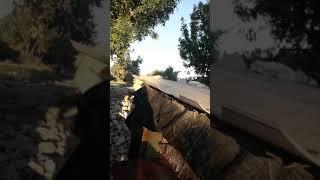 İlk Videom (Alan Koruma Acımasız Paşa)