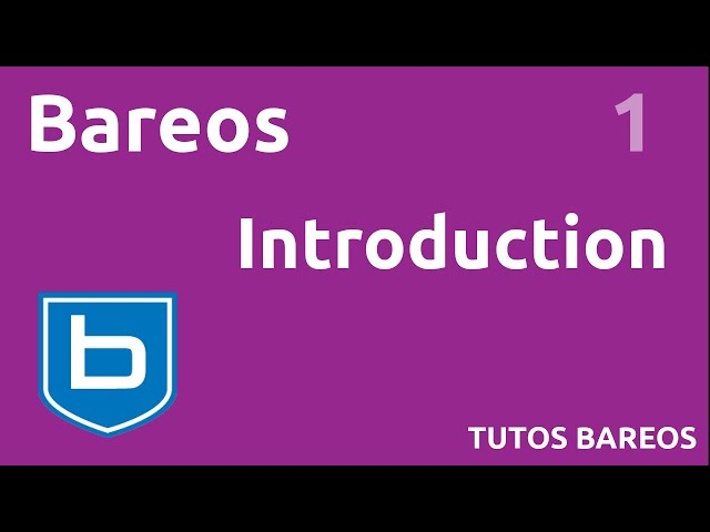 BAREOS - 1. INTRODUCTION