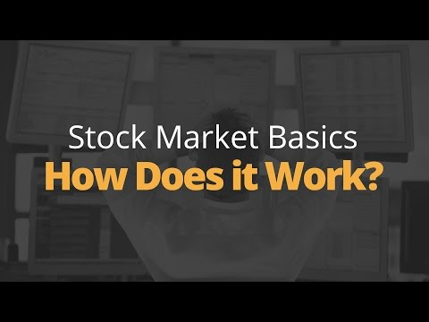 Stock Market Basics - How the Stock Market Works