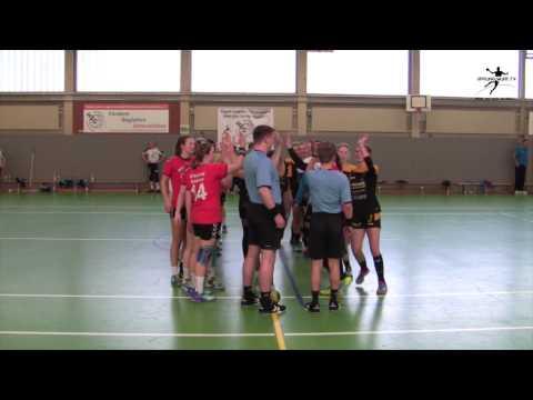 SH-Liga | Damen | 16/17 | HSG Mö/Schö vs. SV Preußen Reinfeld | Spielbericht | SPRUNGWURF.TV