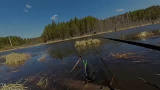 плотва річка ушаковскіх канава