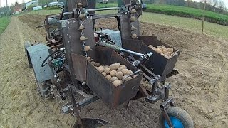 Sadzenie ziemniaków 2017 - Sadzarka sam / Andoria s301d - sam.