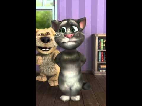 tom il gatto parlante da