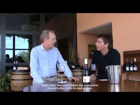 PRADOS COLECCIÓN SYRAH Wine Tasting