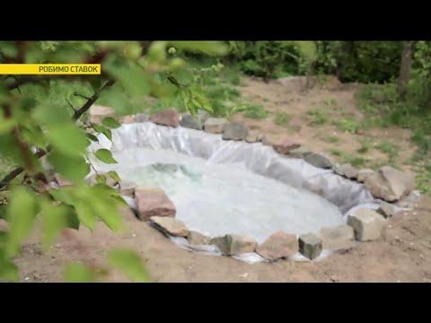 Как сделать пруд на своей даче | Ранок з Україною