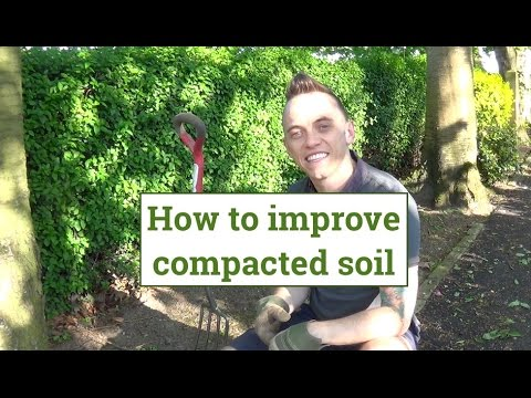 How To Loosen Improve Compacted Soil