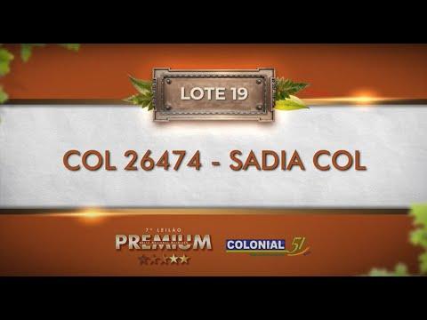 LOTE 19   COL 26474