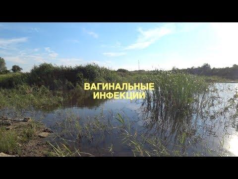 ИНФЕКЦИИ У ЖЕНЩИН. Малахов.