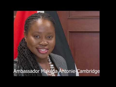 The Effect of the 4th Industrial Revolution With Ambassador Makeda Antoine | Pan African Talks