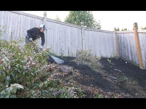 Landscape Prep Steep Slope Erosion Control Youtube