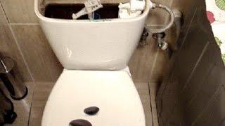 Naprawa cieknącej spłuczki WC. Najczęstsze usterki - Jak samemu naprawić, wymienić i  wyregulować