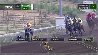 Vidéo de la course PMU PREMIO GUITARREO H