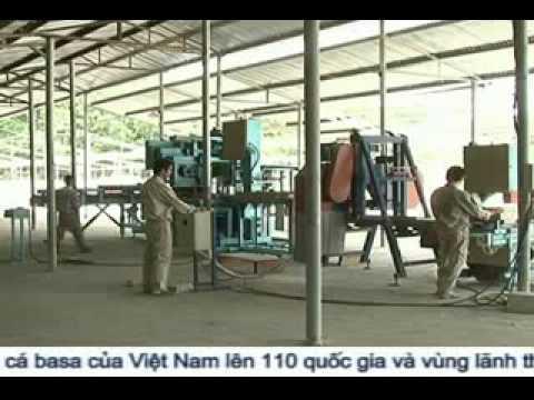 Bê tông nhẹ Việt Nam
