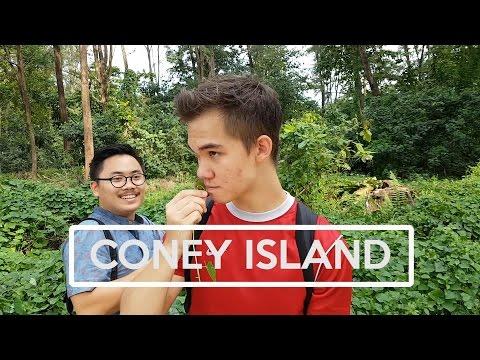 CONEY ISLAND IS EDIBLE?!